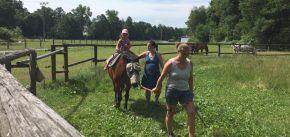 Koňské dopoledne