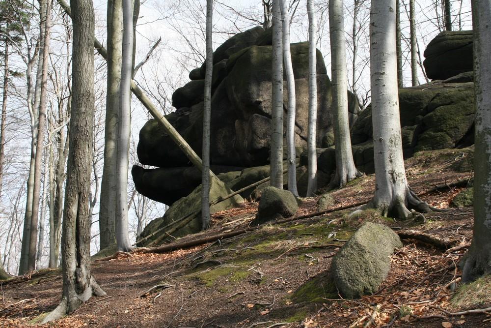 Oldřichov, Skalní hrad a Lysé skály objektivem Petra Kellnera