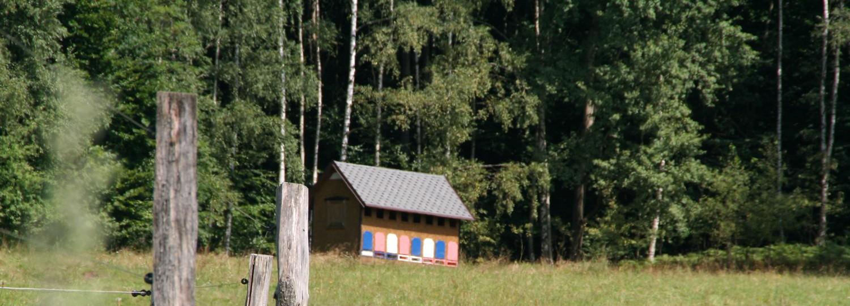 Po kopcích kolem Oldřichova