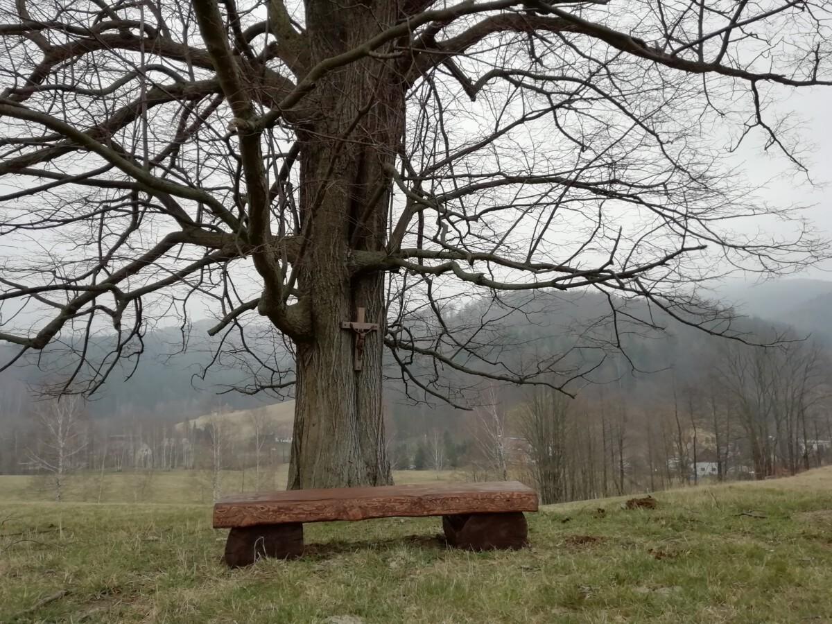 Nové lavičky
